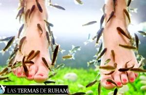 http://oferplan-imagenes.larioja.com/sized/images/ruham3-300x196.jpg
